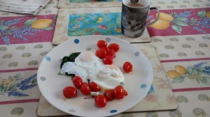 Breadkfasting fit for a freakin' Queen: poached eggs on spinach and garlic-thyme tomatoes from the garden.