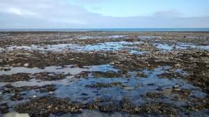 Welsh sea 1_800